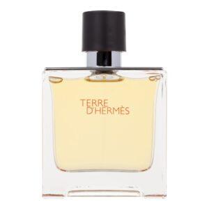 Hermes Terre d´Hermes (Parfüüm, meestele, 75ml)