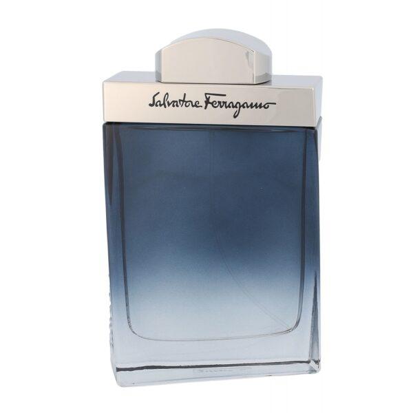 Salvatore Ferragamo Subtil Pour Homme (Tualettvesi, meestele, 100ml)