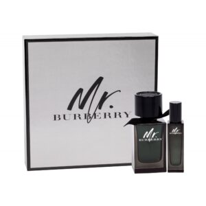 Burberry Mr. Burberry (Parfüüm, meestele, 100ml) KOMPLEKT!